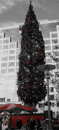 Kansas City Christmas Tree